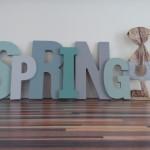 Spring - Hase - Aufnahme